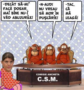 CSM (1)